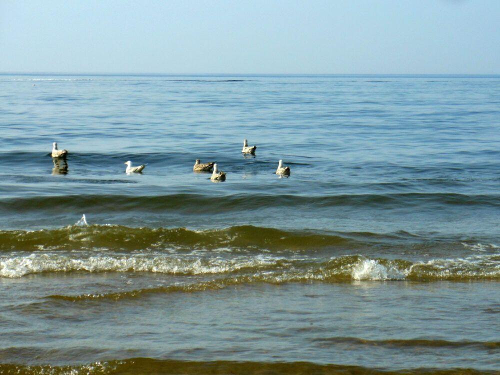 Turystyka-a-zrzut-sciekow-bezposrednio-do-Morza-Baltyckiego